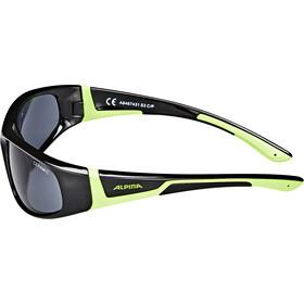 Alpina Flexxy Glasses Barn black-green